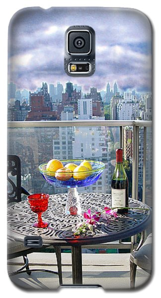 View From The Terrace Galaxy S5 Case by Madeline Ellis