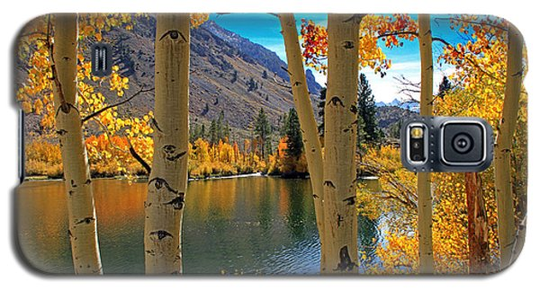 View Through The Aspens Galaxy S5 Case by Donna Kennedy