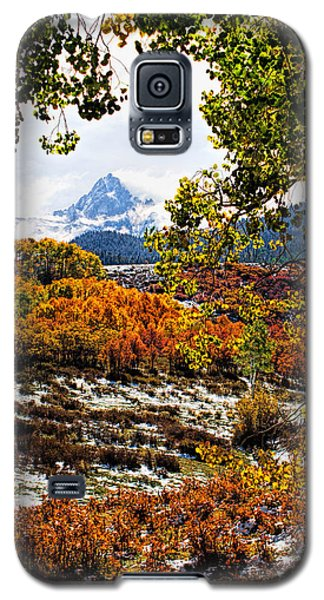 Viewed Through The Aspen Leaves Galaxy S5 Case