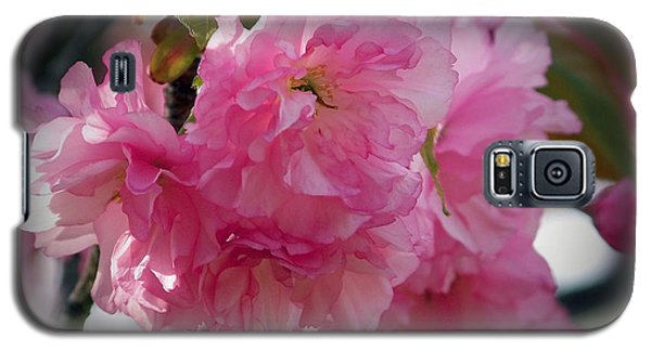 Galaxy S5 Case featuring the photograph Vignette Cherry Blossom by Gena Weiser