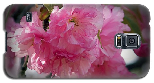 Vignette Cherry Blossom Galaxy S5 Case