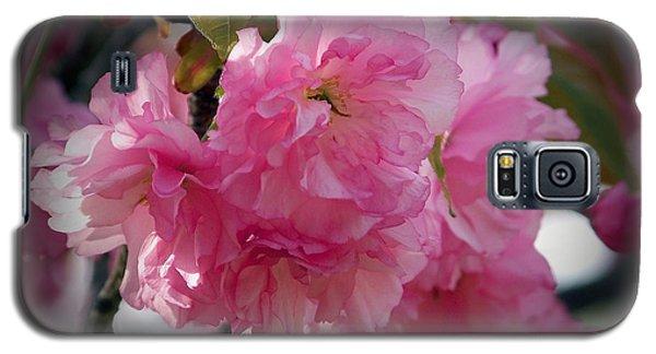 Vignette Cherry Blossom Galaxy S5 Case