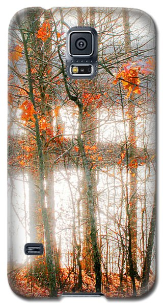 Village Creek Dunn Lake Galaxy S5 Case