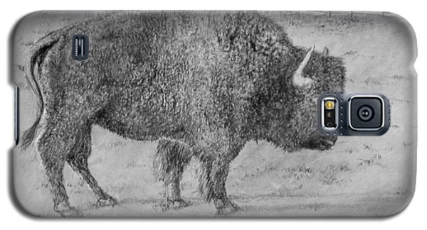 Villages Buffalo Galaxy S5 Case by Jim Hubbard