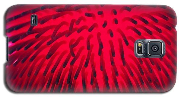Vimtoe Galaxy S5 Case by Graham Hawcroft pixsellpix