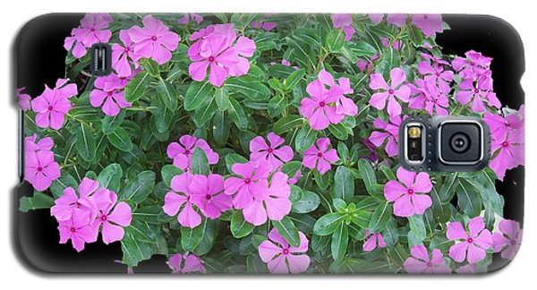 Galaxy S5 Case featuring the photograph Vinca Plant by Frederic Kohli