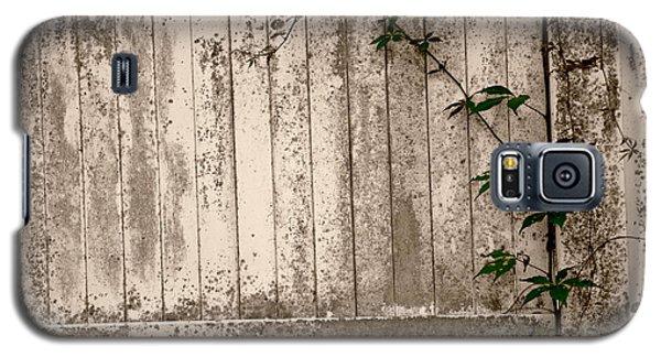 Vine And Fence Galaxy S5 Case by Amanda Vouglas