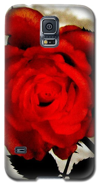 Galaxy S5 Case featuring the photograph Vine And Rose 3 by Gayle Price Thomas