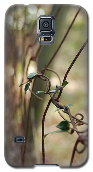 Vine On Rusted Fence Galaxy S5 Case