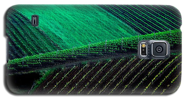 Vineyard 05 Galaxy S5 Case
