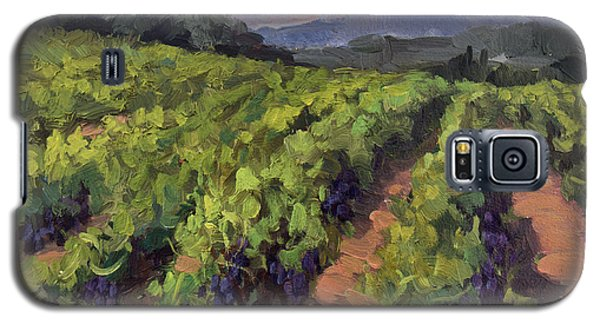 Vineyard At Dentelles Galaxy S5 Case by Diane McClary