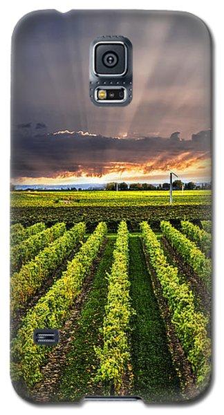 Vineyard At Sunset Galaxy S5 Case