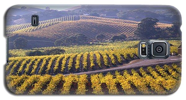 6b6386-vineyard In Autumn Galaxy S5 Case