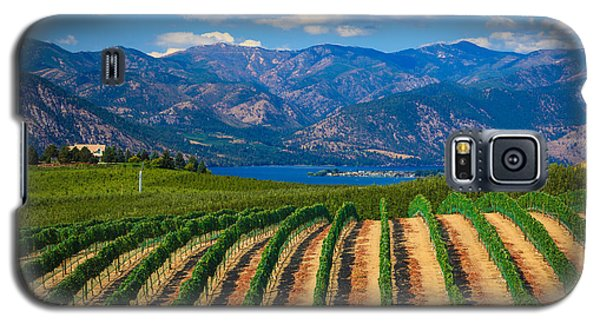 Vineyard In The Mountains Galaxy S5 Case