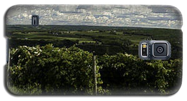 Vineyard On Keuka Lake Galaxy S5 Case by Richard Engelbrecht
