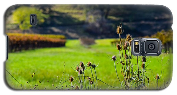 Galaxy S5 Case featuring the photograph Vineyard Thistles by CML Brown