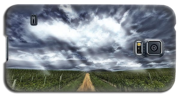 Vineyard Walk Galaxy S5 Case