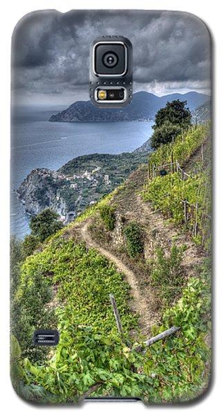 Vineyards Above Cinque Terre 1 Galaxy S5 Case