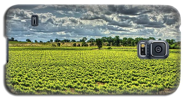 Vineyards Almost Ripe Galaxy S5 Case