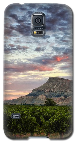 Vineyards And Mt Garfield Galaxy S5 Case by Ronda Kimbrow