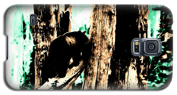Galaxy S5 Case featuring the photograph Vintage Bear In The Mount Rainier Forest Early 1900 Era... by Eddie Eastwood