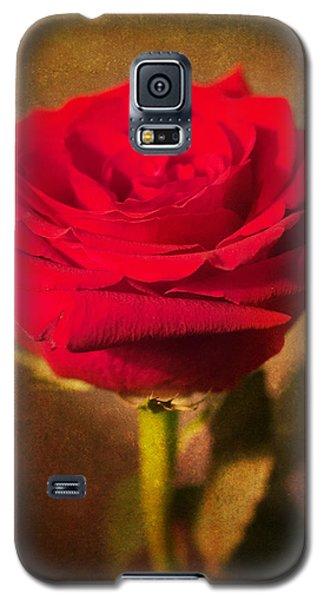 Vintage Beauty Galaxy S5 Case
