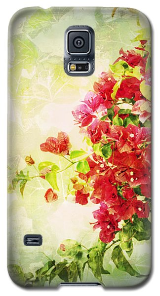 Vintage Bougainvillea San Diego California Galaxy S5 Case by Marianne Campolongo