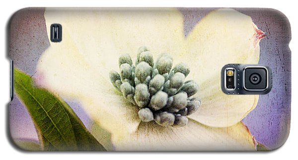 Galaxy S5 Case featuring the photograph Vintage Dogwood Blossom by Trina  Ansel