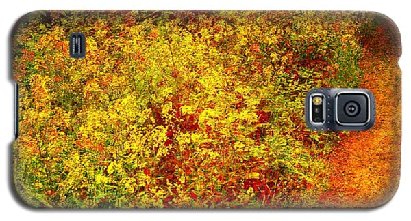 Galaxy S5 Case featuring the photograph Vintage Garden Path by Terri Gostola