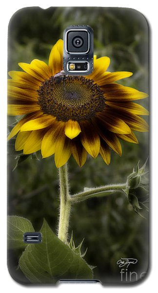 Vintage Rustic Sunflower Galaxy S5 Case