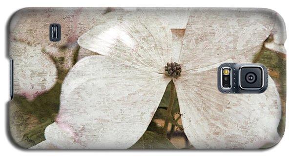 Vintage White Flowering Dogwood Galaxy S5 Case by Brooke T Ryan
