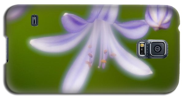 Galaxy S5 Case featuring the photograph Violet-1 by Tad Kanazaki