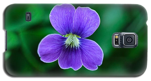 Galaxy S5 Case featuring the photograph Violet Splendor by Julie Andel