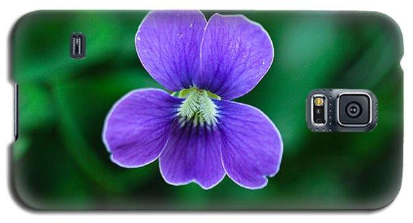 Violet Splendor Galaxy S5 Case by Julie Andel