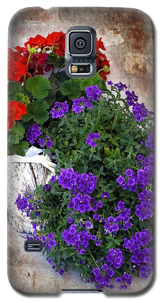 Galaxy S5 Case featuring the photograph Violets And Geraniums On The Bricks by William Havle