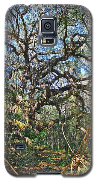 Virgin Forest Galaxy S5 Case