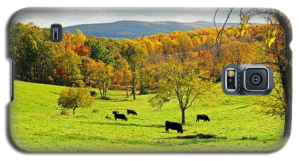 Galaxy S5 Case featuring the photograph Virginia Autumn by Olivia Hardwicke