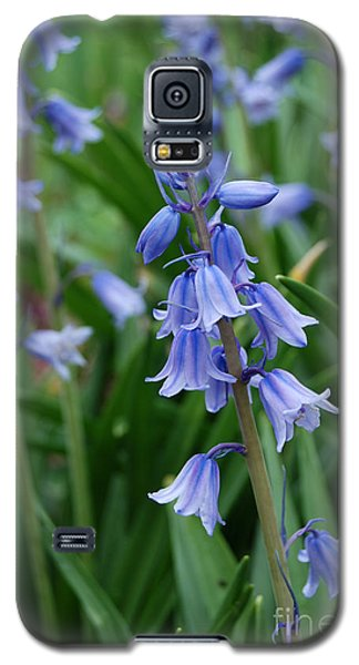 Galaxy S5 Case featuring the photograph Virginia Blue Bells  by Eva Kaufman