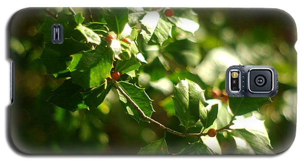 Galaxy S5 Case featuring the photograph Virginia Holly Tree And Berries by Suzanne Powers