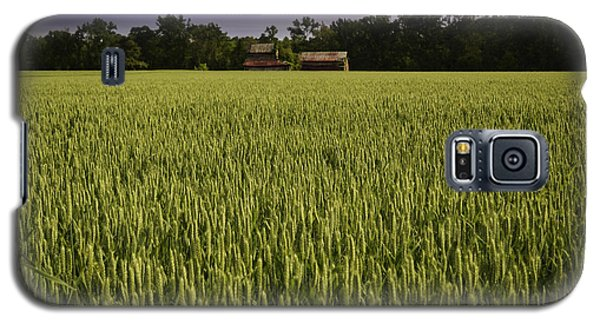 Virginia Wheat Field Galaxy S5 Case