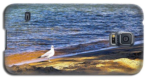 Visitor - Lake Tahoe Galaxy S5 Case