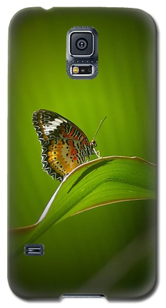 Galaxy S5 Case featuring the photograph Visitor by Randy Pollard