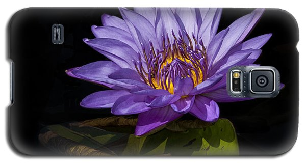 Visitor To The Water Lily Galaxy S5 Case by Roman Kurywczak
