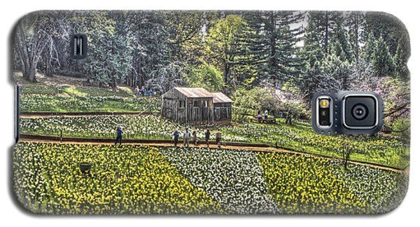 Visitors On Daffodil Hill Galaxy S5 Case