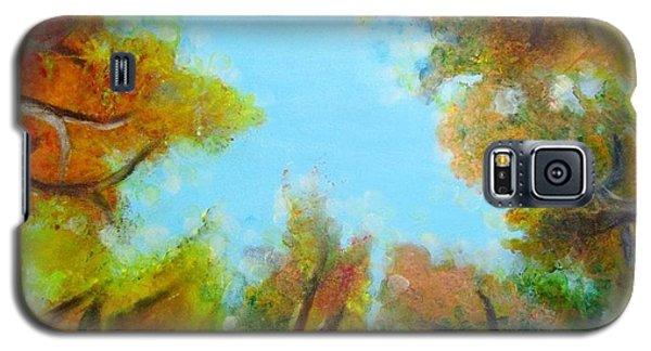 Vista Of The Past Galaxy S5 Case