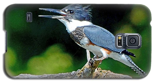 Galaxy S5 Case featuring the photograph Vocal Belted Kingfisher by Rodney Campbell