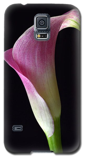 Volute Calla Galaxy S5 Case by Terence Davis