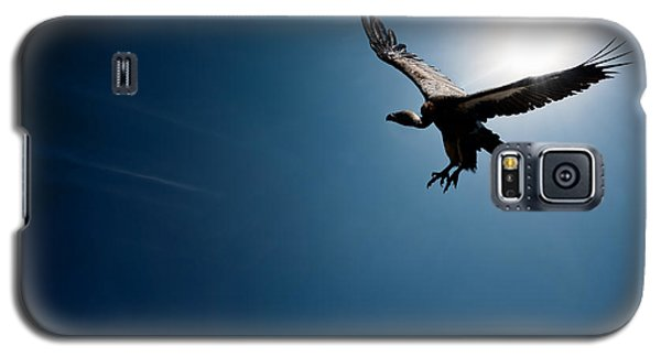 Vulture Flying In Front Of The Sun Galaxy S5 Case