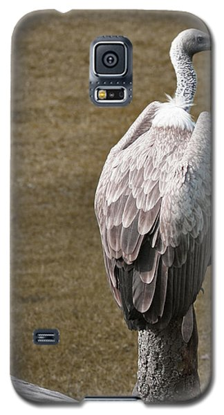 Vulture On Guard Galaxy S5 Case