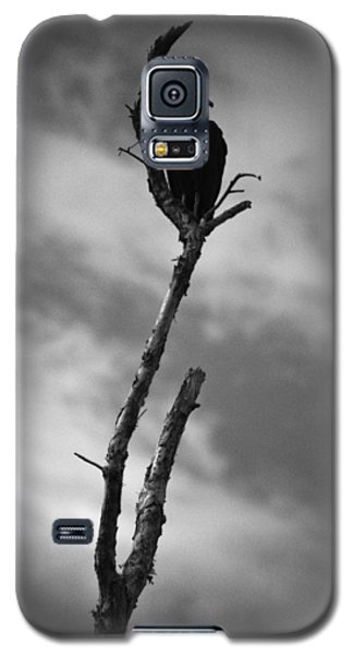 Galaxy S5 Case featuring the photograph Vulture Silhouette by Bradley R Youngberg